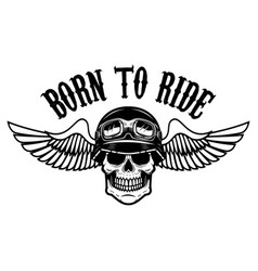 Born to ride human skull in winged helmet design vector