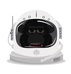 Chimpanzee in an astronaut space helmet vector