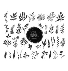 Collection of hand drawn floral elements vector