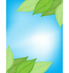 Green and blue nature card vector image