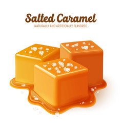 Realistic salted caramel composition vector