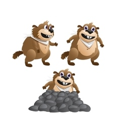 Three images of the beaver in various poses vector image