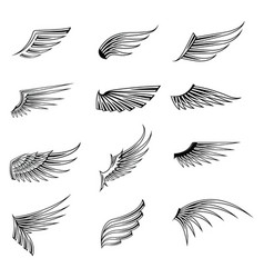 Vintage wings icon set isolated on white vector