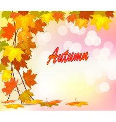 autumn foliage sale banner vector image vector image