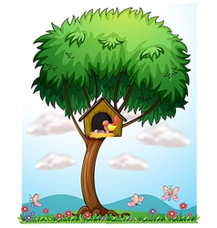 A bird in a tree with a bird house vector