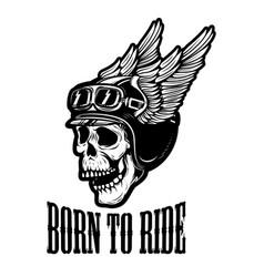 Born to ride human skull in winged helmet design vector