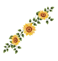 spring sunflower drawinf with leaves vector image