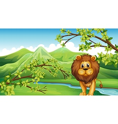 The mountain view with a lion and a river vector image