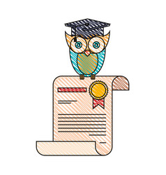 Color crayon stripe image of owl knowledge in vector