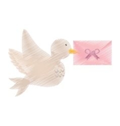 Dove and envelope wedding symbol icon vector