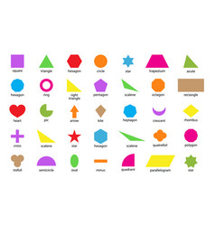 Geometric shape basic figure for education vector