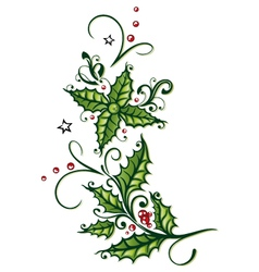Holly stars tendril vector image