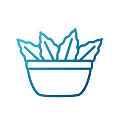 leaf salad bowl vector image