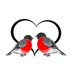 A couple of cute bullfinches pyrrhula with a heart vector image