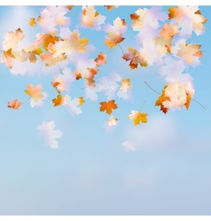 Autumn leaves on the sky EPS 10 vector
