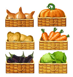baskets for storing vegetables food vector image