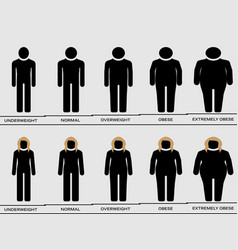 comparison among different types body mass vector image