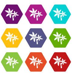 Palma icon set color hexahedron vector
