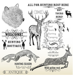 Set engraved hand drawn animals deer bear fox vector