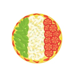 pizza as Italian flag vector image vector image