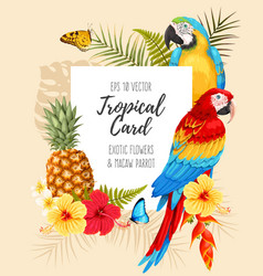 card with macaw and flowers vector image