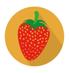 Colorful circular shape with strawberry fruit vector