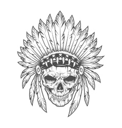 Indian skull with feathers art vector image