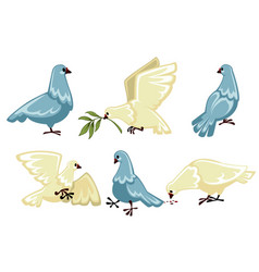 Pigeons or doves isolated wild birds flying vector