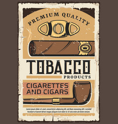 premium quality tobacco cigars and cigarettes vector image