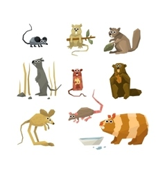 Rodents Collection vector