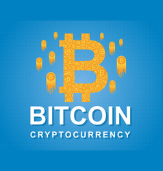 Background of bitcoin style collection vector