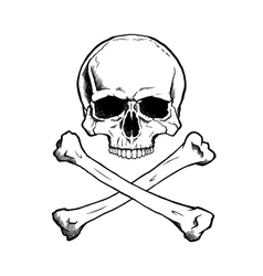 Blackwhite human skull and crossbones vector image