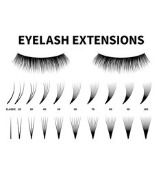 eyelash extensions curling extension volume vector image