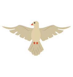 Holy spirit dove symbol catholic vector