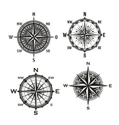 Rose of winds arrows nautical compass vector