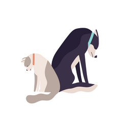 Unhappy abandoned cat and dog sitting together vector