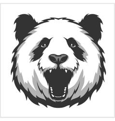 Portrait of Panda Aggressive face bears vector image
