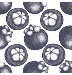 Purple mangosteen fruit background vector