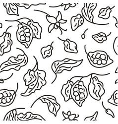 Cocoa seamless pattern art line organic vector