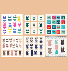 collection lingerie panty and bra set symbol vector image