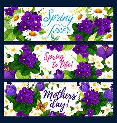 spring flower with butterfly greeting banner vector image