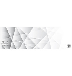 the abstract gradient gray color pattern vector image
