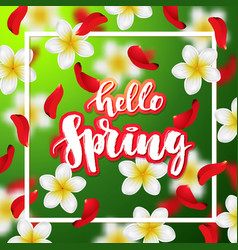 hand drawn calligraphy hello spring vector image vector image