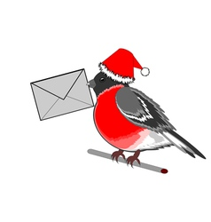 A Christmas bullfinch with a letter vector image