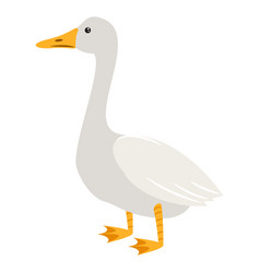 Cute cartoon goose isolated vector