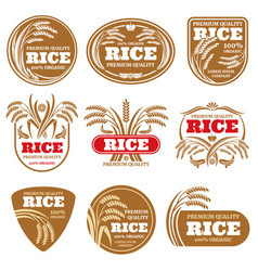Paddy grain organic rice labels healthy food vector