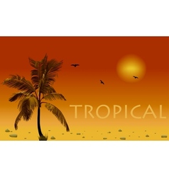 Sea and coconut palm sunset vector image
