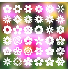 Set of Flower icons vector image