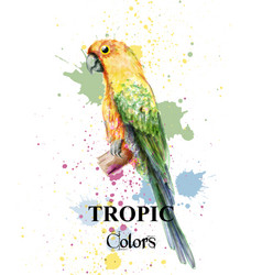 Tropical paradise parrot bird watercolor vector
