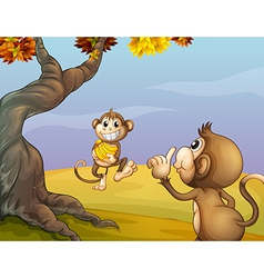 Two monkeys beside the big tree vector image
